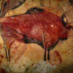 Altamira Bison By Rameessos